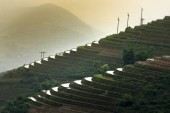 Fotografie The image is as beautiful as the oil painting of terraced field. Curved lines of Terraced rice field during the watering season at the time before starting to grow rice in Mu Cang Chai in Yen Bai Province