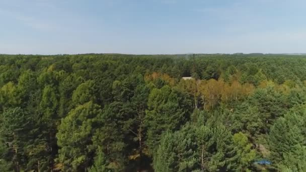 House in autumn forest, shot by drone. Concept: forest trees, private house, nature landscape 4k
