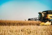 Fotografie Picture of combine harvester machine harvesting ripe crops
