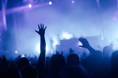 Picture of dancing crowd at music concert festival