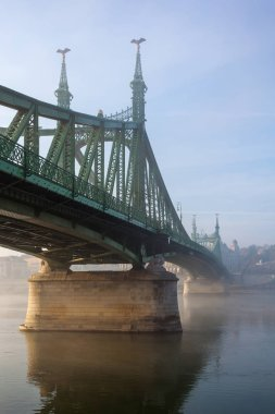 The Liberty Bridge in Budapest in Hungary, it connects Buda and