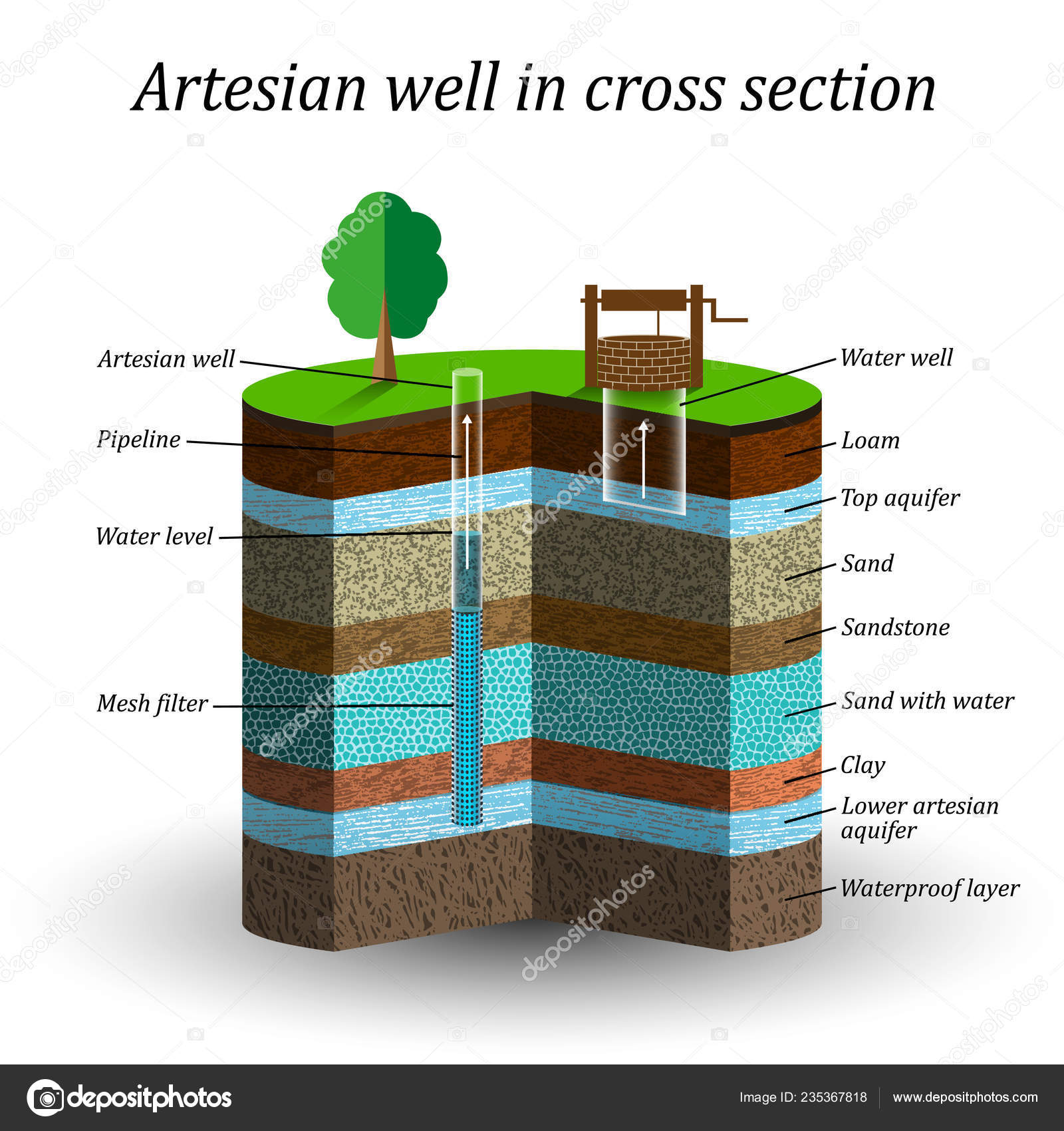 Artesian Water Well Cross Section Schematic Education Poster ... on