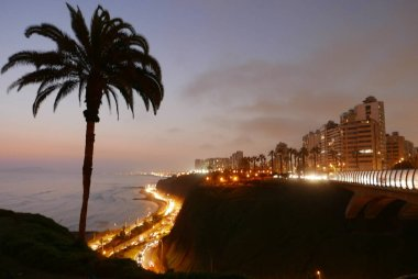 Scenic night view of Villena bridge in Miraflores district of Lima. In the image there are palms, trees, lawn, plants, a park, lampposts, exterior modern buildings, a highway at coastline level and a cliff on a beautiful sky. stock vector