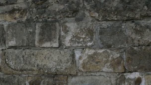 Detail přírodní šedé kamenné zdi textury. Starý ročník. Budovy na pozadí. Detail