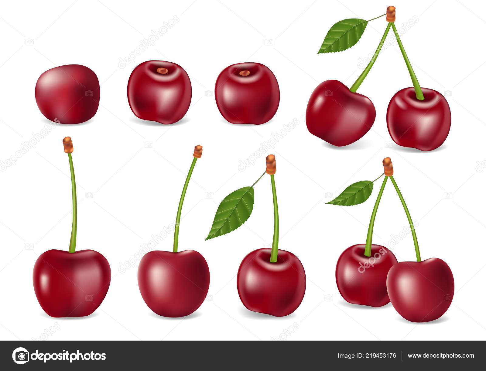 set of realistic ripe cherry with leaves templates for juice