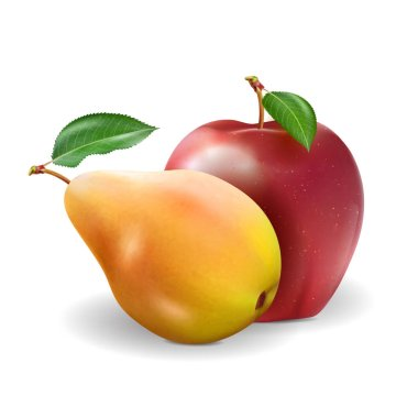 Ripe Apple and pear on transparent background, realistic vector, 3d illustration stock vector