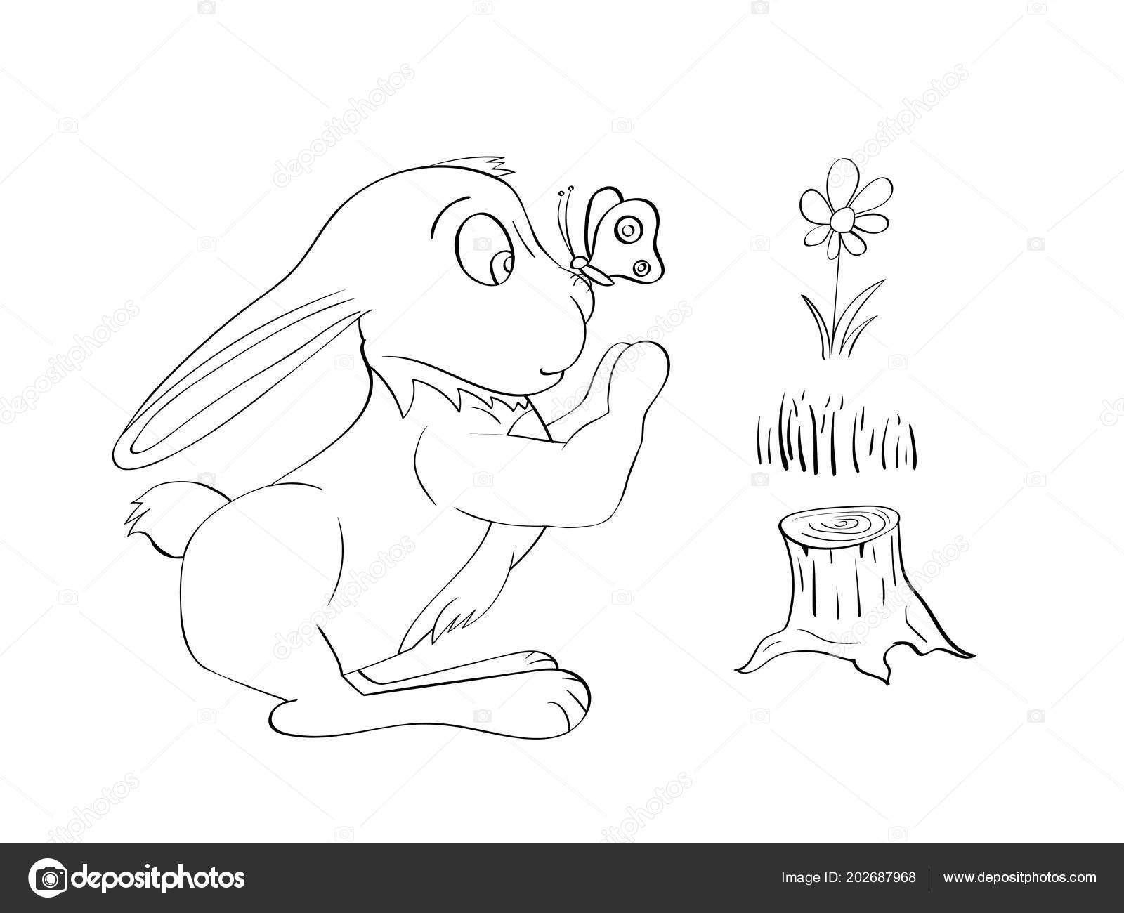Conejo Para Colorear Contorno Línea Arte Libro Para Colorear ...
