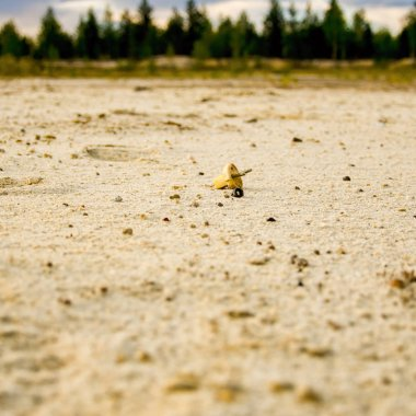 Electric plug lying on the sand. Sandy wasteland, in the distance you can see the forest.