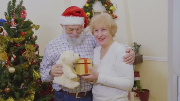 Happy Old Couple Play Presents White Bear Christmas Tree Grandfather
