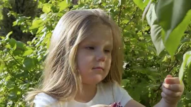 Roztomilá malá dívka dotek lila květy a s úsměvem. Rozkošné dítě prozkoumat prostředí kolem