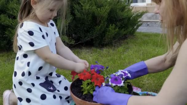 Mother and little daughter replant flowers from plastic pot into clay pot. Family works together at nature in the garden.