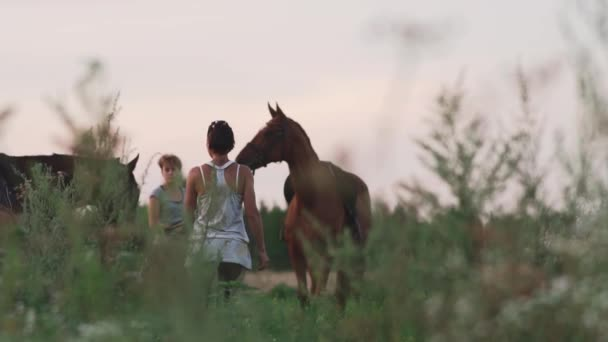 Two young girls with horses on the field