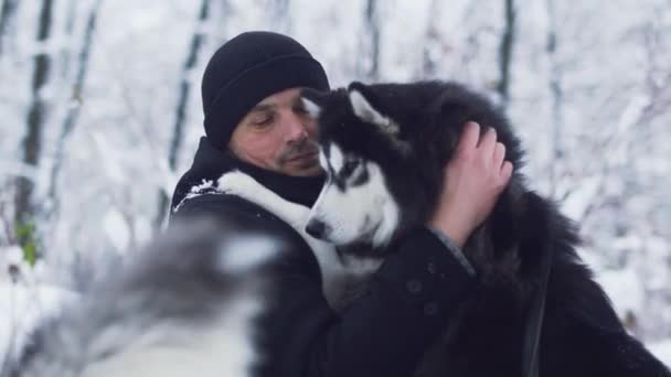 Pohledný muž škrábe a tahy krásný sibiřský husky nejlepší přítel v pozadí zasněžené zimy. Pes a majitel na zimní procházky v lese