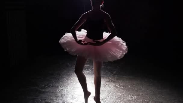 Graceful flexible ballerina dancing on her pointe ballet shoes in spotlight on black background in studio. Girl shows classic ballet pas wearing tutu and pointe shoes.