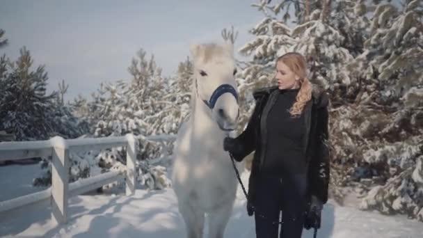 Adorable blonde strokes and feeds her hands a beautiful white horse on a snowy country ranch. Concept of horse breeding.