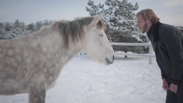 Bearded man with glasses teasing a horse. Joyful playful guy having fun with a horse on a country ranch in the winter season. Slow motion.