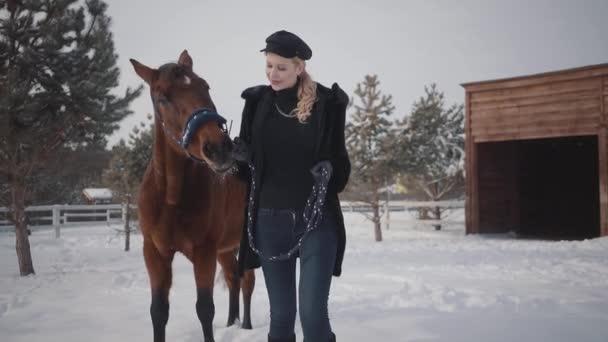 Hezká mladá žena chodí s krásným koněm v zimě ranči ve sněhu. Mladá žena vede koně venku. Koncepce chovu koní. Zpomalený pohyb.