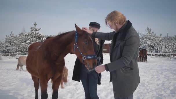 A srác és a lány stroke imádnivaló ló-country tanya a téli szezonban. Egy fiatal pár egy farm a lovak szabadban sétál. Lassú mozgás.
