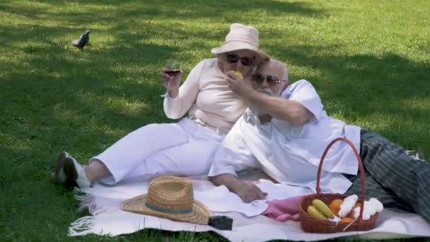 Happy senior couple at the picnic in park