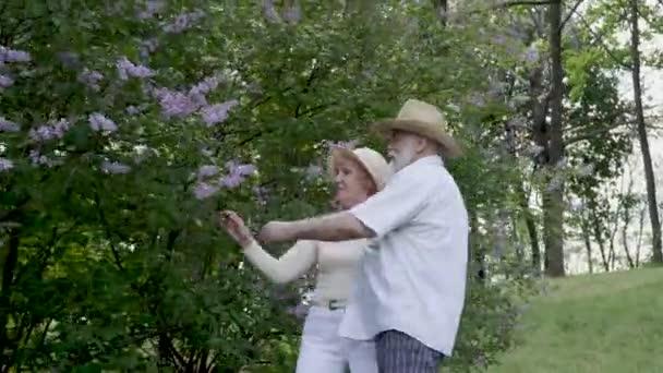 Schönes Seniorenpaar genießt sommerliche Natur