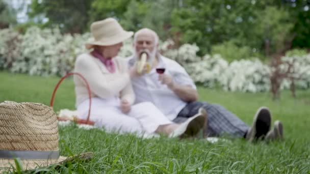 Happy senior couple at the picnic in summer park