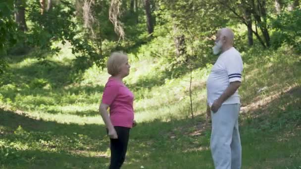 Senior man with senior woman doing sport exercises in summer park