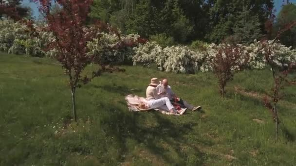 Senior in love couple relaxing on the grass at the blanket in park. Shooting from the drone.