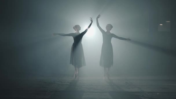 Two graceful professional ballerinas dancing elements of classical ballet in the dark. Ballet dancers shows classic ballet pas in spotlight on black background in studio.