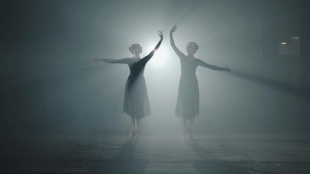 Dva elegantní profesionální baletky tančící prvky klasického baletu v temnotě. Baletní tanečníci ukazují klasické baletní pas v reflektoru na černém pozadí ve studiu.