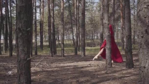 Půvabná žena v červených šatech tančí v lesní krajině. Nádherná soudobá tanečnice. Půvabné děvče běží a skáče. Kamera se pohybuje souběžně s dívkou. Střelba z boku.