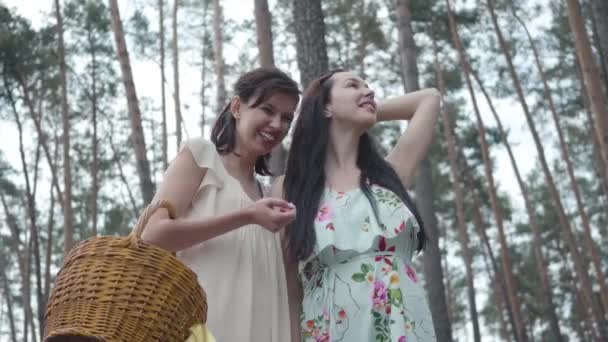 Portrait two adorable young woman wear dresses standing against the background of a pine forest and looking at amazing view of nature. Charming girls walk outside the city. Cute girlfriends outdoors.