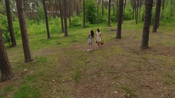 Top view of young women wear summer dresses standing in the top of rock and looking at amazing view of nature. Adorable girlfriends spending weekend together outdoors. Shooting from the drone.