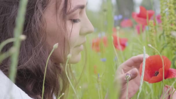 Portrait of cute young woman sitting in poppy field. Connection with nature. Green and red harmony. Contrast colors in poppy. Blossoming poppies. Red poppy in the hands of the girl.