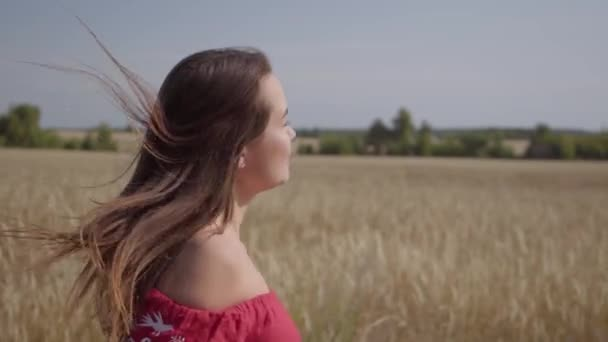 Side view of beautiful carefree woman with long hair running through the wheat field, hair fluttering beautifully. Connection with nature, natural beauty. Real people series. Slow motion.