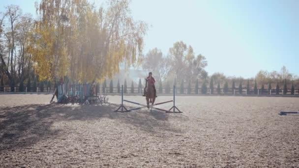 junges kaukasisches Mädchen in pinkfarbener Kleidung und Reithelm springt auf einem anmutigen braunen Pferd über die Barriere und reitet dem Schuss davon. Professionelle Reiterausbildung im Außengehege.