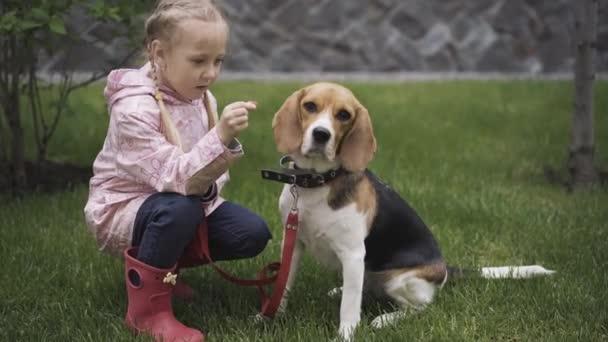 Fröhliches kleines Mädchen gibt Beagle Hundefutter. Porträt eines lächelnden glücklichen kaukasischen Kindes und eines schönen Haustieres im Freien. Freizeit, Kindheit, Lebensstil, Freizeit.