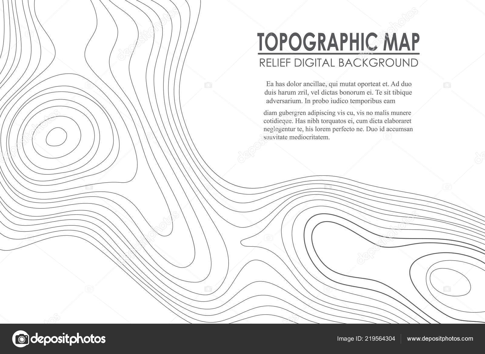 Topographic Map Contour Background Line Map With Elevation