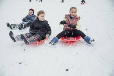 Children from the community are coming down a hill in a  public park on sleds in the snow.