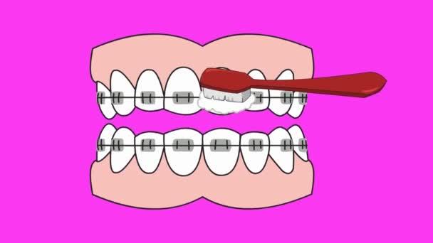 Zubní péče - vektorové animace