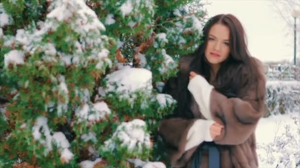 brunette stylish girl near Snow covered trees in winter, in brown fur coat slow motion