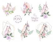 Magic póni logó. Akvarell emblémát, ló, unicorn Pegazus gyűjteménye. Kézi rajz illusztráció.