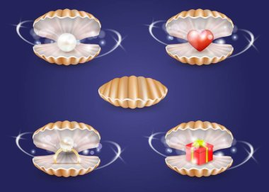 Vector realistic pearl seashells with jewelry and gift box