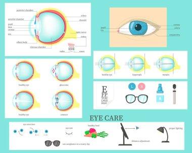 Human eye infographic, vector flat isolated illustration