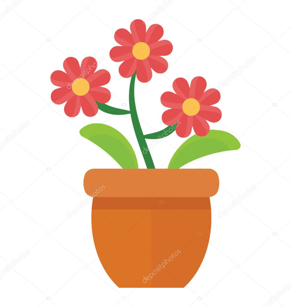 A flowery plant with leaves and stems denoting barberton daisy