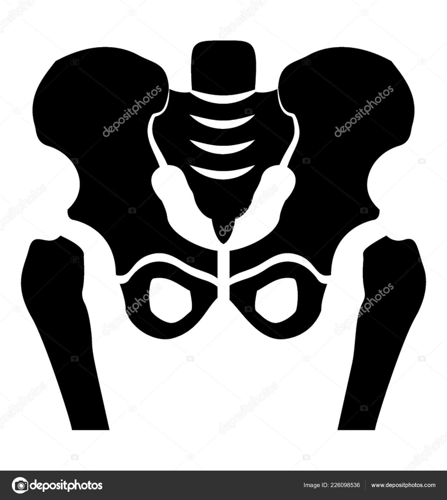 Conception Squelette Solide Icône Bassin Image Vectorielle