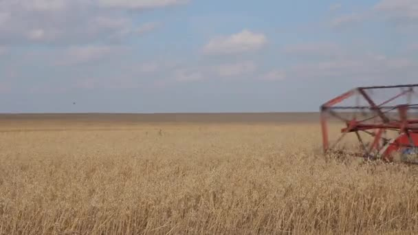 Agricultural machinery. Combine harvester in a wheat field. Time to harvest crops.