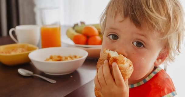 Small child eating croissant at breakfast. Close up of face of toddler little boy eating tasty bun. Head and shoulders portrait.