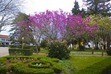 AVEIRO, PORTUGAL - March 3, 2019: Infante Don Pedro Park in Aveiro