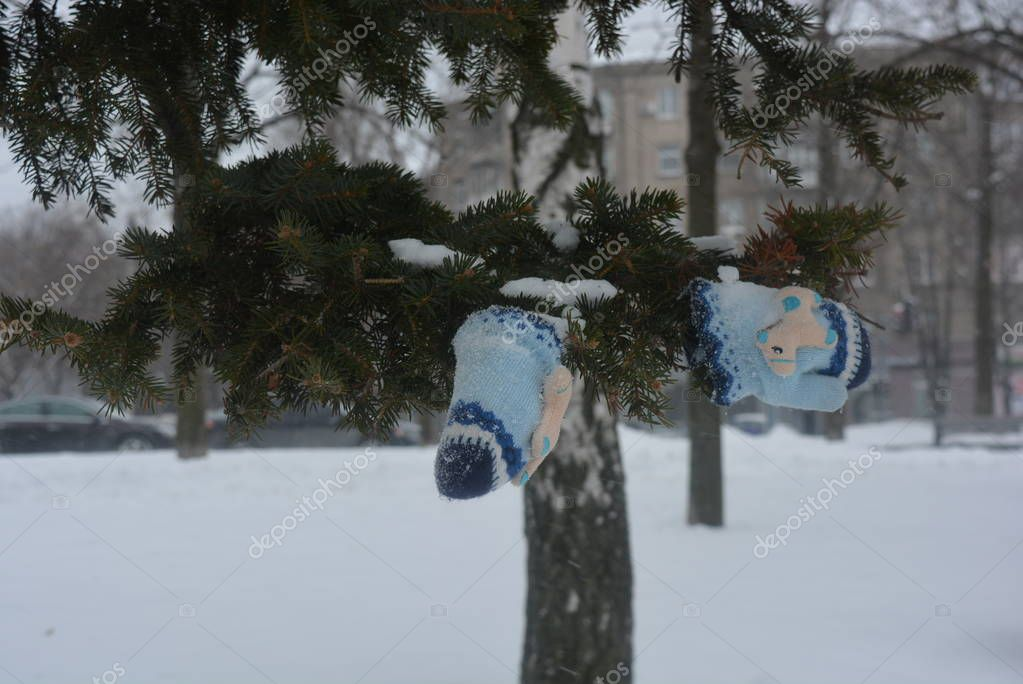 On the embankment of the river Dnipro stands a Christmas tree with children's gloves on it in the snow, in winter in cold weather