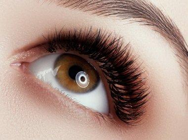 Eye Makeup . Closeup macro shot of fashion eyes visage. Close up of woman eye with beautiful brown with black shades smokey eyes makeup . Modern fashion make up .